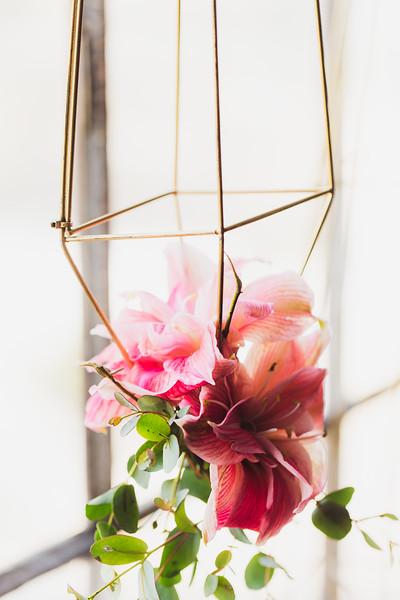 shawna_diy_hanging_plants-13-L