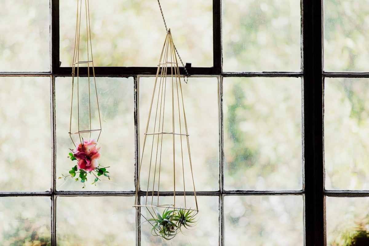 shawna_diy_hanging_plants-16-X2